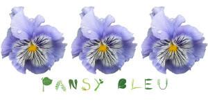 Pansy Bleu